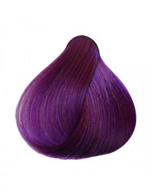 0.2 - Violeta